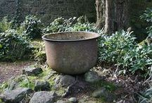 Witches Garden