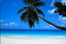 Beach Dreaming / Let the sound of the crashing waves take you away to a quiet and peaceful place. Let the sun wash across your body, feel the sand between your toes and enjoy the romance and relaxation of being at the beach.