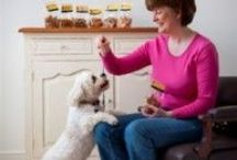 Health and Wellbeing for Dogs