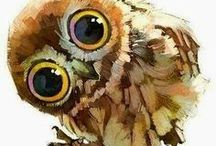 OWLS / Everything to do with owls!!!