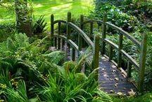 Bolfracks ideas / Garden ideas