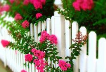 Fence up your life!