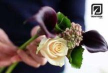 My wedding! / Ideas for my wedding