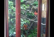 Umbau für Pantherchamäleon / Der Schrank wurde nach hinten um 20 cm verlängert, an den Seiten sowie im Deckel der Vitrine wurden großzügige Lüftungsflächen geschaffen. Für mehr Substrattiefe wurde der Boden des Terrariums nach unten in die Schublade des Schrankes verlegt.  Bauzeit insgesamt 3 Monate Bewohner: 1 Pantherchamäleon (Furcifer pardalis) Erbauer: Sabrina Huber