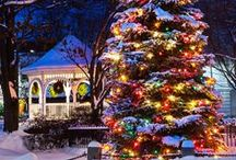 Christmas Lights / Here are some ideas for your Christmas garden