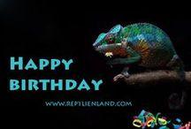 Reptilien Grußkarten / Grußkarten für Fans von Echsen, Schlangen und Co.