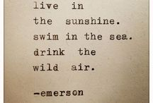 ralph waldo emerson / quotes.inspirational