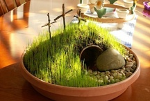 Easter Resurrection and Passover Ideas  / by Kimberly Desiderio