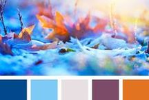 Color Inspiration in Blue / All those gorgeous color combinations that belong to blue, sky, peace and the ocean