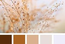 Color Inspiration in Brown / All those gorgeous color combinations that belong to brown, choclolat, earth, nature, neutrals, beige,