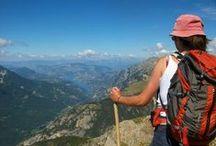 Été en Haute-Provence / L'été, les Alpes de Haute-Provence permettent de se ressourcer et de profitez de pleins d'activités. Entre les champs de lavande, les lacs et plans d'eau, les montagnes, il y en a pour tous les goûts. Vous pouvez y pratiquer de la randonnée, du VTT, de la montgolfière, du canyoning, ... Et tout cela, dans les Alpes de Haute-Provence.