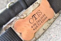 Quiet Collar ID Tags