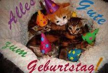 GeburtstagsBilder / Sammlung von GeburtstagsBilder, Postkarten, Geburtstagsgrüsse, Grusskarten und alles Gute zum Geburtstag Karten. Die beste Wünsche Geburtstag → http://www.bilderundgeburtstagskarten.com