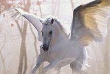 Pegasus / Pegaso