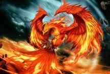 Phoenixes / Aves Fénix