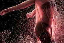 d.a.n.c.e / Dance is the hidden language of the soul