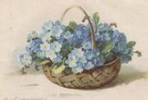 couronnes étiquettes,cadres,frises, transferts shabby et paniers de fleurs