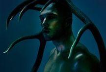 inspiration: animus / animalistic ideas and metamorphosis