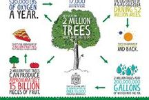 Earth Day / #EarthDay Infographics, Earth Day Network, Events, Activities