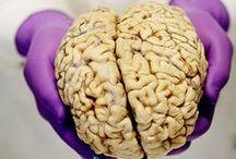 Psychology/Medicine/Science
