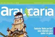 Araucaria 7º Edición