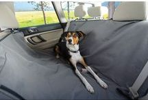 Travelling with Your Pet / Top tips about travelling with your pet!