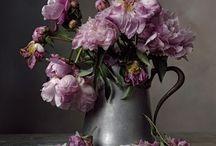 Flowers Inspo / Flowers