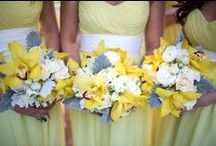 Wedding Decor / Colors: yellow & cognac/mocha brown, Flowers: Orchids from Hawaii + local flowers, outdoor venue  / by Ericka Staples