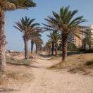 Zona de Baño del Hotel Tres Anclas en la Playa de Gandia / Servicios de la zona de baño correspondiente al Hotel Tres Anclas de la Playa de Gandia