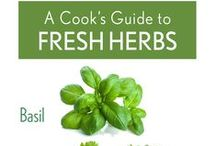 Tips and Guides for Herbs