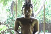 Hotel Siddalepa Ayurvedha Health Resort, Sri Lanka / Ayurvedha Resort in Sri Lanka