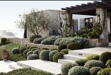 //Gardens and landscapes / Garden and landscaping inspiration by Sally Caroline Interior Design