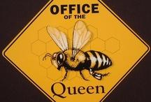 Królowa Pszczół/Queen Bee
