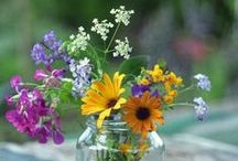 Inspiration florale / by marigmay