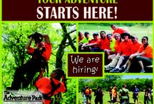 We're Hiring! / The Adventure Park at Heritage Museums and Gardens in Sandwich, MA is hiring for 2016!  Several positions are available for the spring, summer, and fall seasons!