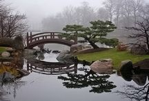 Japanese gardens / The serenity of it all. The Japanese sense of beauty.
