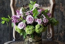 purple flowers / by Kari Young Floral Designs
