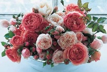 pink flowers / by Kari Young Floral Designs