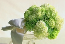 green flowers / by Kari Young Floral Designs