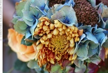fall flowers / by Kari Young Floral Designs