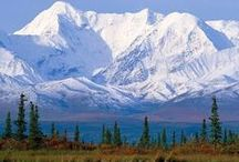 Alaska / Some wonderful pictures/memories of a fantastic place to live. / by Sally Bailey
