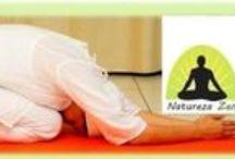 NATUREZA ZEN / Yoga e Ayurveda : A Cura Natural