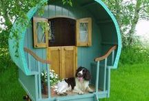 DESIGN // Pet Products / Pinspiration for dog-proofing