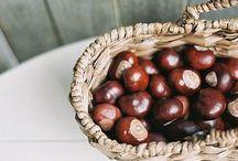 YaY Fall! / Roasted chestnuts :: YaY!