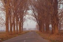 Στο δρόμο / Φωτογραφίες έξω, στο δρόμο, στη φύση