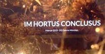 Im Hortus conclusus / Hortus conclusus Gewächshaus Kunst Klosterarbeiten Februar 2019 Claudia Starkloff DG Galerie