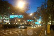 Christmas time loved by Sensation Apartments