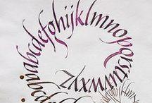 Calligraphy - Curves  / Calligraphy / by Calligraphy Hobby