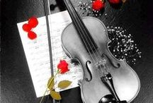Love Violins / It shows the most beautiful violins evaaaa
