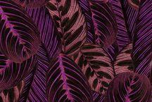 CREATE . Patterns